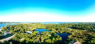 Land for sale in 0000000000 Damen Lane, Port Richey, FL, 34668