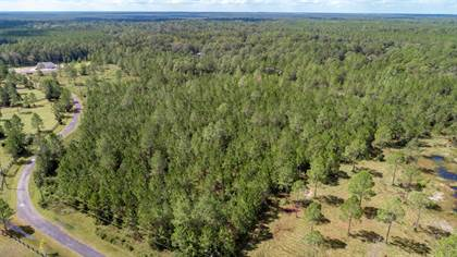 Lots And Land for sale in 2 FOREST ACRES LN, Jacksonville, FL, 32234