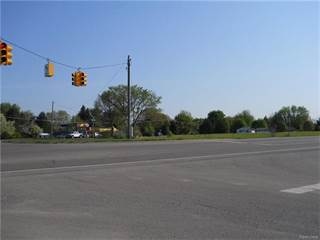 Comm/Ind for sale in 9191 PETTYSVILLE Road, Hamburg, MI, 48169