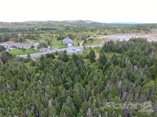 Land for sale in 110 Chipmans Road, Spaniard's Bay, Newfoundland and Labrador, A0A3X0