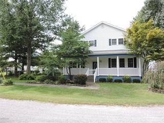 Single Family for sale in 211 Railroad Street, Campbell Hill, IL, 62916