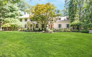 Single Family for sale in 41a WEHRLI RD, Greater Long Valley, NJ, 07853