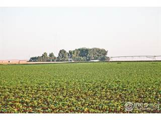 Farm And Agriculture for sale in 42908 County Road 29, Greater Ault, CO, 80650