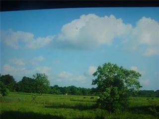 Land for sale in 954 S Mlk Fm 160 Road S, Ames, TX, 77575