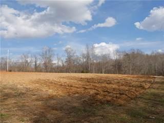 Land for sale in 0 Ed Hawkins Road, Sandy Ridge, NC, 27046