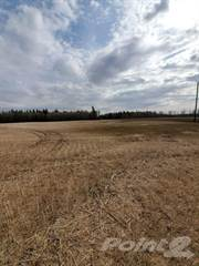 Farm And Ranch for sale in RM 494 Canwood - 161 acres, Canwood, Saskatchewan
