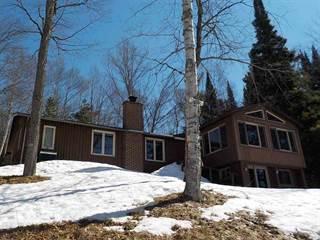 Single Family for sale in 193 Ellenwood, Crystal Falls, MI, 49920