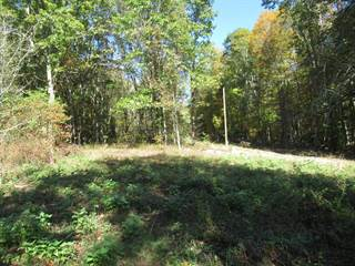 Land for sale in George Ballengee Road, Alderson, WV, 24910