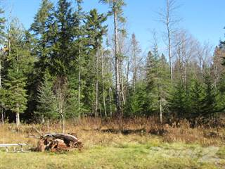 Farm And Agriculture for sale in 121 King Road, Indian Lake, NY, 12842