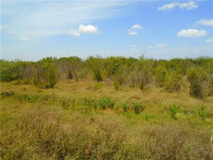 Farm And Agriculture for sale in 0000 CR Road 45 & State Hwy 286, Corpus Christi, TX