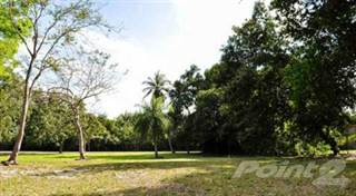 Land for sale in Dorado Beach Estates, Dorado, PR, 00646
