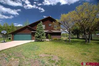Single Family for sale in 60 Cimarrona Circle, Pagosa Springs, CO, 81147