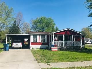 Single Family for sale in 208 Virginia Street, Cambria, IL, 62918