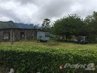 Land for sale in Paso Ancho, Volcán, Chiriquí, Panamá, Cerro Punta, Chiriquí