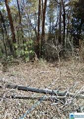 Lots And Land for sale in 5800 AIR PARK DR 29, Birmingham, AL, 35215
