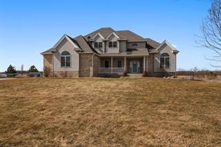 Single Family for sale in 4670 North 9000w Road, Bonfield, IL, 60913