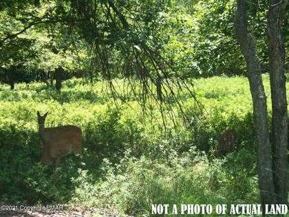 Lots And Land for sale in A40 Towamensing Trail, Albrightsville, PA, 18210
