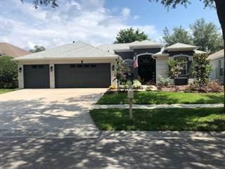 Single Family for sale in 18167 HERON WALK DRIVE, Tampa, FL, 33647