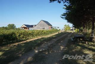 Farm And Agriculture for sale in 1014 County Road 7, Prince Edward, Ontario