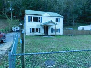 Single Family for sale in 4228 ROCKHOUSE FORK ROAD, Delbarton, WV, 25670