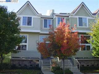 Townhouse for rent in 38241 Eggers Cmn, Fremont, CA, 94536