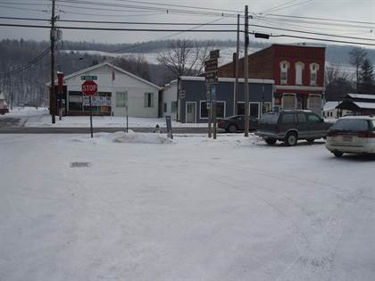 Lots And Land for sale in . Center Street, Tioga, PA, 16946