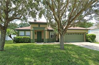 Single Family for sale in 1559 PIER STREET, Clermont, FL, 34711