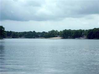 Land for sale in 288 Morgan Ter, Roaming Shores, OH, 44084