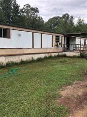 Residential Property for sale in 503 Burnaman St, Newton, TX, 75966
