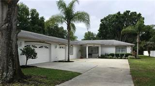 Single Family for sale in 1928 NEBRASKA AVENUE, Palm Harbor, FL, 34683