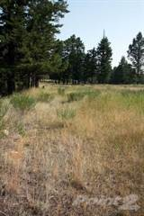 Land for sale in Lot B Toby Hill Road, Invermere, British Columbia