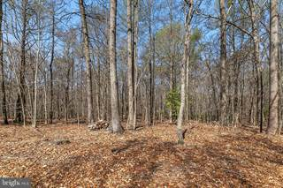 Land for sale in 10925 HAMPTON ROAD, Fairfax Station, VA, 22039