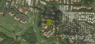 Land for sale in 693 Street, Sardinera Dorado Land Parcel, Dorado, Puerto Rico, Dorado, PR, 00646