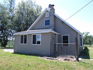 Single Family for sale in 10280 S Case Road, Greater Assyria, MI, 49050
