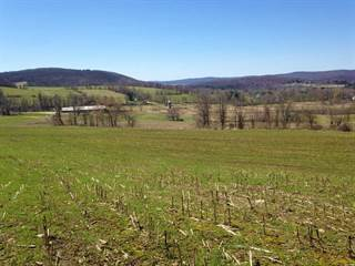 Farm And Agriculture for sale in 24 LAWSON ROAD, Salisbury Town, CT, 06039