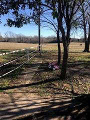 Residential Property for sale in 555 County Road 4775, Sulphur Springs, TX, 75482