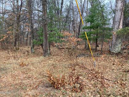 Lots And Land for sale in N Brooks Road, Irons, MI, 49644