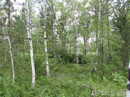 Lots And Land for sale in TBD Paint River-7 7, Crystal Falls, MI, 49920