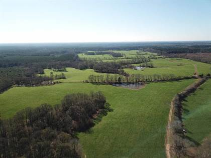 Lots And Land for sale in 1575 HWY 48, Centreville, MS, 39631