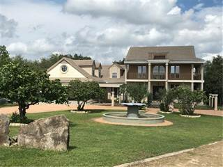 Single Family for sale in 101 Cole ST, Austin, TX, 78737