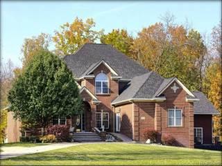 Single Family for sale in 9247 CROCKETT FARM Road, Whitmore Lake, MI, 48178