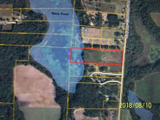 Land for sale in 2889 SALEM CHURCH Road, Sneads, FL, 32460