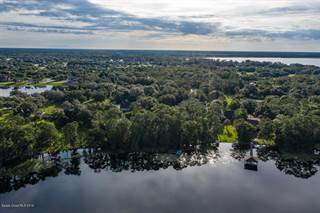 Farm And Agriculture for sale in 0000 Kirby Smith Road, Lake Hart, FL, 32832