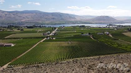 Farm And Agriculture for sale in 10703 12th Ave, Osoyoos, British Columbia, V0H1V5