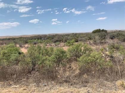 Lots And Land for sale in 000 Sierra Prieto, Sierra Blanca, TX, 79851