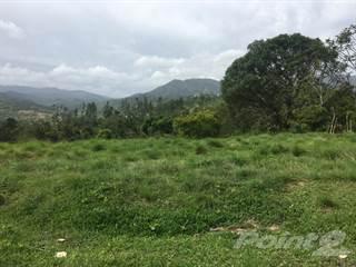 Land for sale in Bo. Salto Arriba, Utuado PR, Utuado, PR, 00641