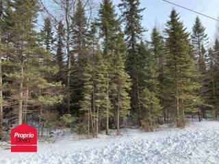 Land for sale in Ch. Thérèse, Weedon, Quebec, J0B3J0