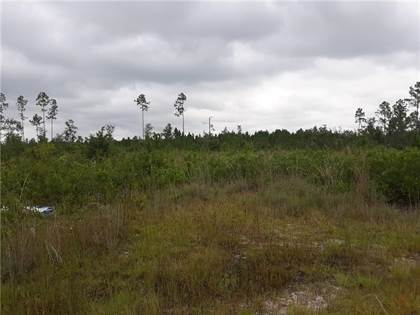Lots And Land for sale in 0 Hwy 301 S, Nahunta, GA, 31553