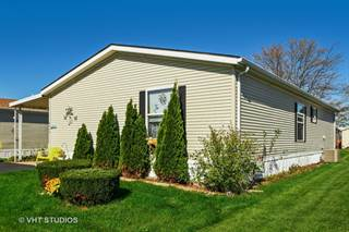 Residential Property for sale in 4848 AUGUSTA Boulevard, Monee, IL, 60449