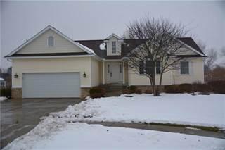 Single Family for sale in 397 MELANIE Court, Linden, MI, 48451